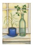 "Sunkissed Herbs II by Jennifer Goldberger - 8"" x 12"", FulcrumGallery.com brand"