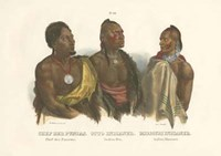 Chief Der Puncas Fine Art Print