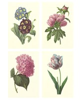 "Mini Boudoin Florals by Chariklia Zarris - 9"" x 12"""