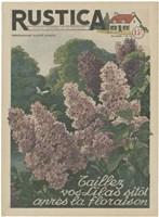 Plantez Des Lilacs by Chariklia Zarris - various sizes