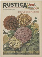 Plantez Des Chrysanthemes by Chariklia Zarris - various sizes