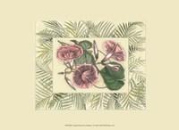 "Tropical Flowers in Bamboo I (horizontal) by Chariklia Zarris - 9"" x 7"""