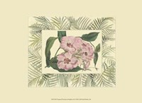 "Tropical Flowers in Bamboo II (horizontal) by Chariklia Zarris - 9"" x 7"", FulcrumGallery.com brand"