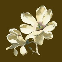Magnolia on Taupe I by Chariklia Zarris - various sizes