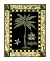 "Bordered Palms on Black I by Vision Studio - 11"" x 14"""