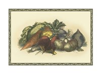 Vegetables from the Earth Fine Art Print