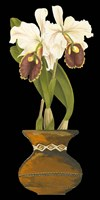 Orchids in Pot II by Chariklia Zarris - various sizes