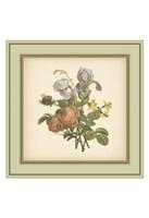 Tuscany Bouquet (P) IV Framed Print
