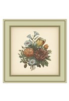 Tuscany Bouquet (P) VI Framed Print