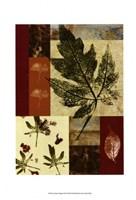 "Leaf Print Collage (U) III by Vision Studio - 10"" x 14"""