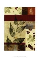 """Leaf Print Collage (U) IV by Vision Studio - 10"""" x 14"""""""
