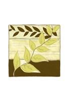 """Patchwork Garden I by Jennifer Goldberger - 10"""" x 10"""" - $12.99"""