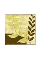 """Patchwork Garden II by Jennifer Goldberger - 10"""" x 10"""" - $12.99"""