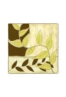 """Patchwork Garden IV by Jennifer Goldberger - 10"""" x 10"""" - $12.99"""