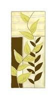 "Patchwork Garden VI by Jennifer Goldberger - 8"" x 18"" - $12.99"