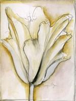 Fluid Beauty II by Jennifer Goldberger - various sizes