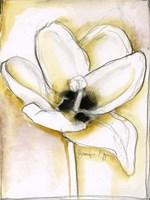 Fluid Beauty III by Jennifer Goldberger - various sizes