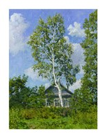 "Birch Tree Near Dwelling by Ilya Yatsenko - 24"" x 36"""