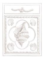 Conch Panel Fine Art Print