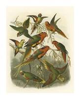 Red Cassel Birds I Fine Art Print