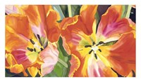 Two Parrot Tulips Giclee