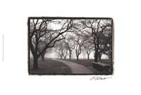 """Foggy Morning Walk by Laura Denardo - 24"""" x 16"""""""