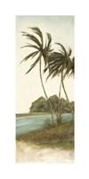 """Trish's Palms II by Chariklia Zarris - 12"""" x 30"""""""