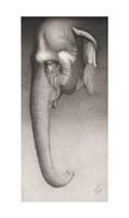 Toni, The Elephant Giclee