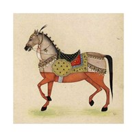 Horse from India I Framed Print