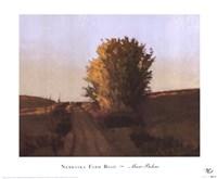 Nebraska Farm Road Fine Art Print