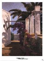 Bougainvillea & Palm Trees Fine Art Print