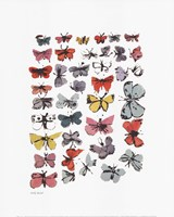 "Butterflies, 1955 by Andy Warhol, 1955 - 16"" x 20"""