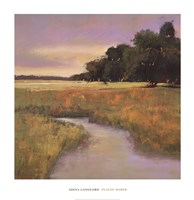 Placid Marsh Fine Art Print