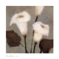 Purity Fine Art Print