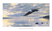Dawn Flight Fine Art Print