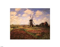 Tulip Fields with Windmill by Claude Monet - various sizes