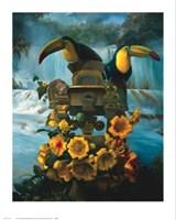 Cascadas de Aguazul Fine Art Print