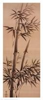 Bamboo Forever I Framed Print