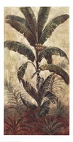 Exotic Palms I Fine Art Print