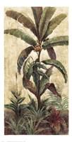 Exotic Palms II Fine Art Print