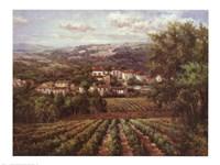 Vino Bianco Fine Art Print