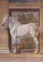 Mantua Fresco I Fine Art Print