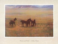 Mares and Foals Fine Art Print