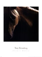 "Spirit Horse by Tony Stromberg - 19"" x 26"""