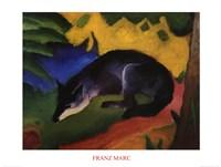 Fuchs Fine Art Print