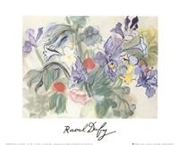 Coquelicotis et Iris Fine Art Print