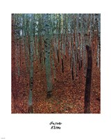 Forest of Beeches, c.1903 Fine Art Print
