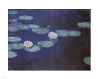NYMPHEAS/1898 by Claude Monet, 1898 - various sizes