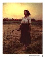 The Song of the Lark Fine Art Print