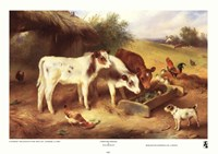 Farmyard Friends, 1920 Fine Art Print